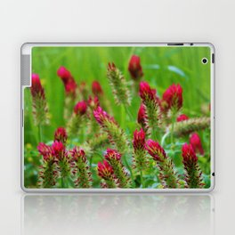 Raspberry Colored Flowers Laptop & iPad Skin