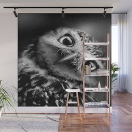owl, black and white Wall Mural