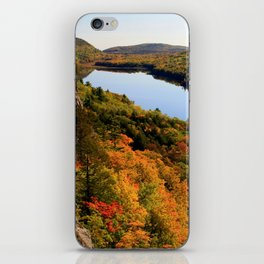 Autumn Splendor iPhone Skin