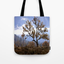 Early morning fog in the valley Tote Bag