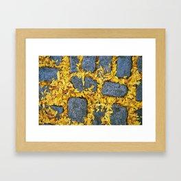 bright fall Framed Art Print