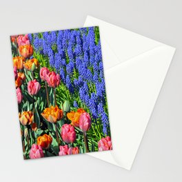 Tulips and muscari Stationery Cards