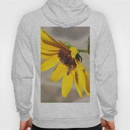 Desert Sunflower Pollen Shop Hoody
