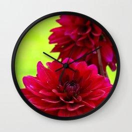 Bright Magenta Dahlias on Green Wall Clock