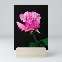 Romantic Pink Rosebud Mini Art Print