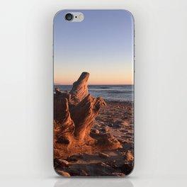 Drift Wood Wonders iPhone Skin
