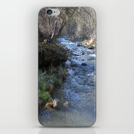 East Fork Hayfork Creek.... iPhone Skin