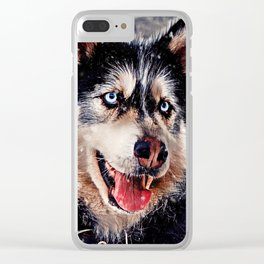 Playful Husky Clear iPhone Case