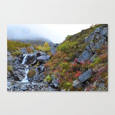 Independence Mine Waterfall Canvas Print