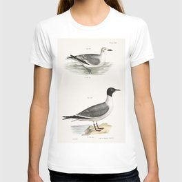 289 290 Laughing Gull young (Larus atricilla)  from Zoology of New York (1842-1844) by James Ellswor T-shirt