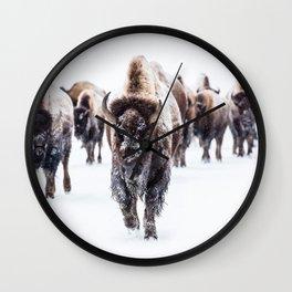 Bison, American Animal, Bufallo, Winter Wall Clock