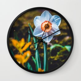 A flower, on a pretty day. Photography Wall Clock