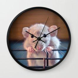 Adorable Rat Wall Clock