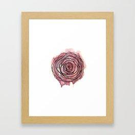 english pen rose Framed Art Print