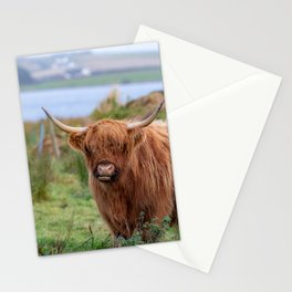 Long haired Highland cattle - Highland cow, Highlander, Heilan coo - Thurso, The Highlands, Scotland Stationery Cards