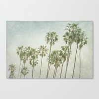 palm trees Canvas Prints featuring Palm Trees by Pure Nature Photos