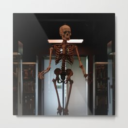 Human Skeleton at Museum Vrolik Metal Print