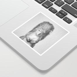 Squirrel - Black & White Sticker