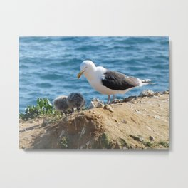 Gull and Two Chicks Metal Print