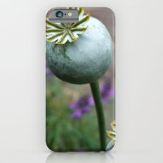 Seed Heads iPhone 6 Slim Case