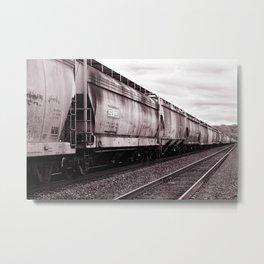 Long Train Metal Print