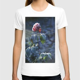 Frosted Rose T-shirt