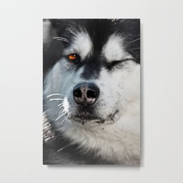 The Wink Metal Print