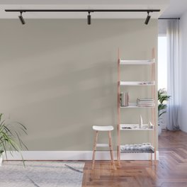 PPG Glidden Synchronicity Tan PPG1021-2 Solid Color Wall Mural