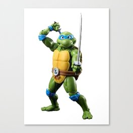 Ninja Turtles Canvas Print
