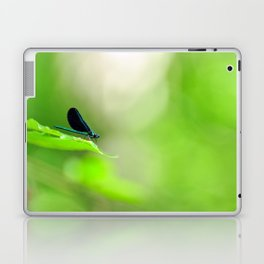Blue Damsel and the Lime Green Sky Laptop & iPad Skin
