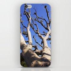 Allure iPhone & iPod Skin