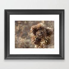 Spiky Framed Art Print