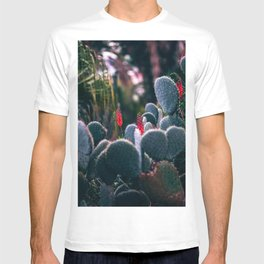 Paddle Cactus T-shirt