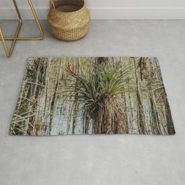Unexpected Beauty Rug
