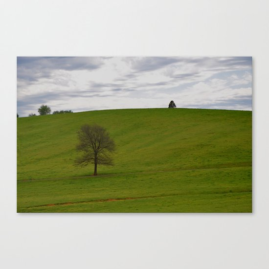 Big Empty Canvas Print