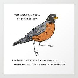 American Robin – State Bird of Colorado Art Print