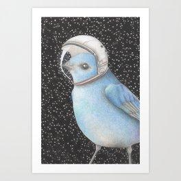 Bird space Art Print