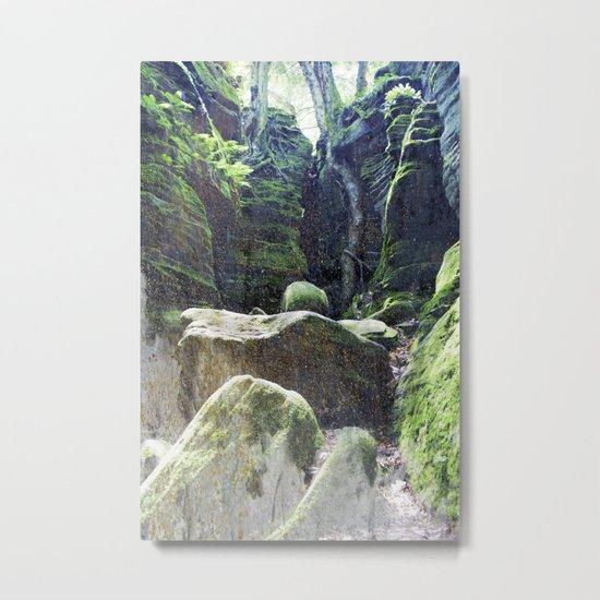 natura 3 Metal Print