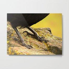 The Raven Cliff Metal Print