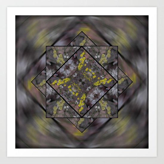 Wattle in Focus Art Print