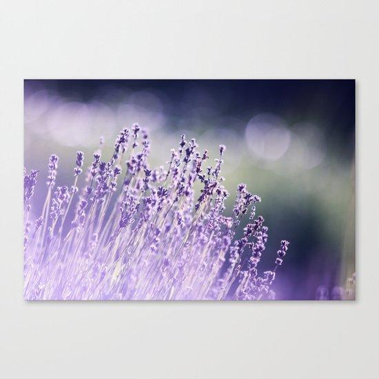 Spring Purple I Canvas Print