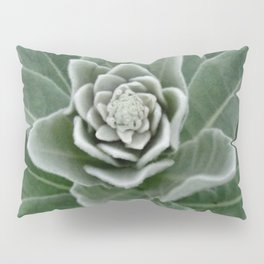 Golden Ratio in a Wild Weed Pillow Sham