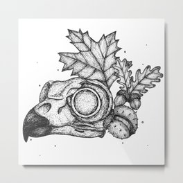 Owl Anatomy Metal Print