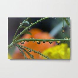 lemon and orange drops Metal Print