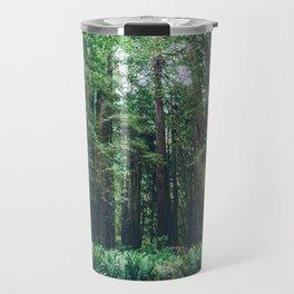 Redwood Forest  Travel Mug
