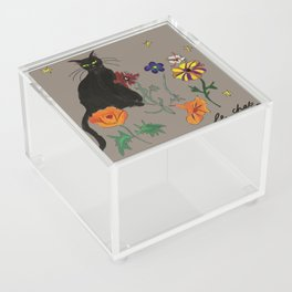 Black cat Le Chat Acrylic Box