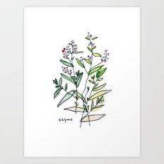 Thyme Art Print