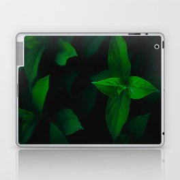 Green Mint Leaves With A Black Background Laptop & iPad Skin