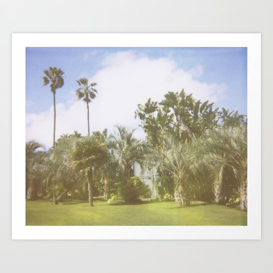 Paradiso Palm Trees Tropical Scene Art Print
