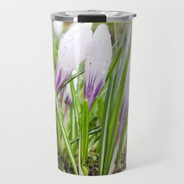 Wet flowers of crocuses. Travel Mug